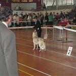Выставка 15.04.2006 - региональная
