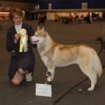 International dog show riga 14.06.2009