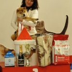 Speciality show in Ryga, NAKATSUKO NO KATAI GO ZARA – BIS puppy